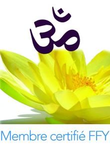 Logo-FFY