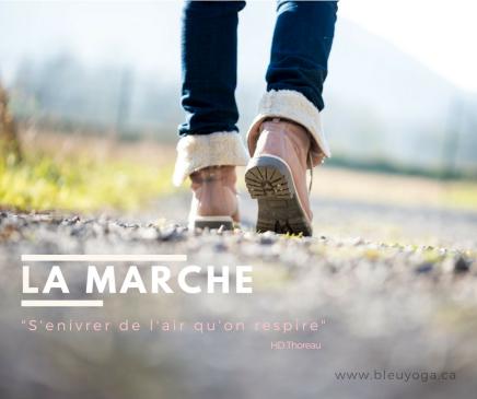Le Marche-_bleuyoga_manoncurie